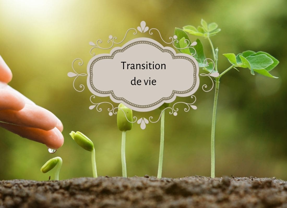 comment poser une intention, vivre ma vraie nature, ikigaï