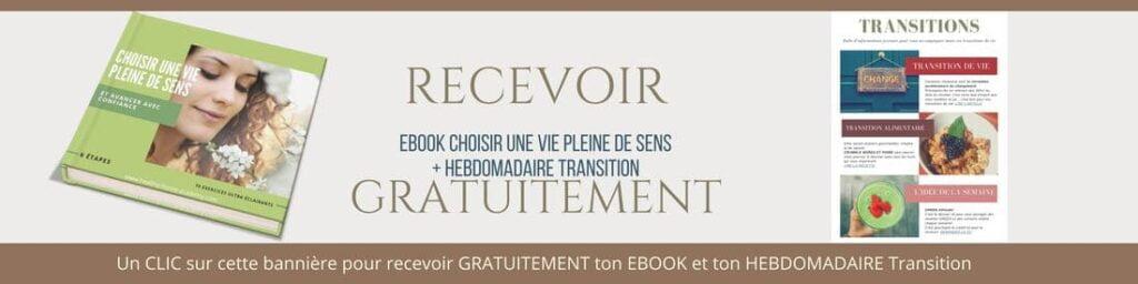 recevoir gratuitement ebook choisir une vie pleine de sens, hebdomadaire transition de vie