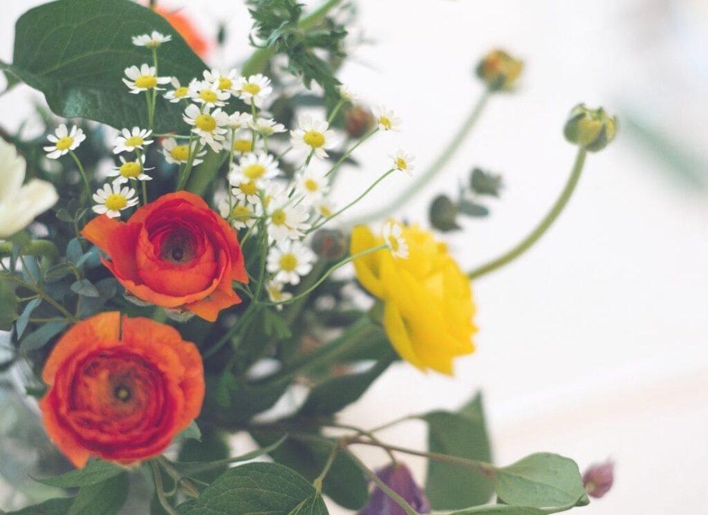 se préparer à célébrer beltane, vivre au rythme des saisons, vivre ma vraie nature, ikigaï, transition de vie, changer de vie, réinventer sa vie, fleurs des champs