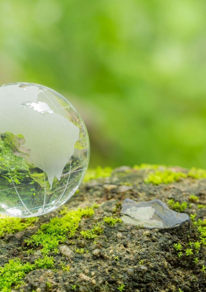 nouvelle lune en vierge, contribuer au monde, ikigaï, vivre ma vraie nature